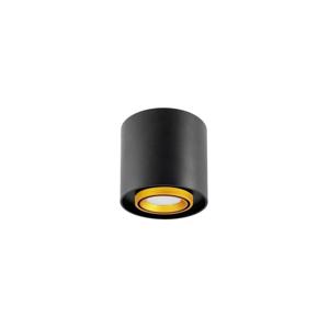 Polux Stropné bodové svietidlo EGER 1xGU10/10W/230W
